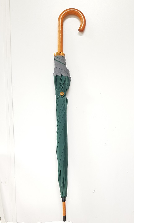 Umbrella classic green automatic Ø100cm